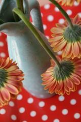 retro... (jolanda r (aka jojoro)) Tags: flowers red stilllife white canon retro vase tray dots jojoro