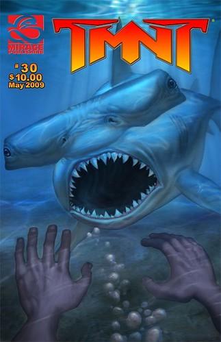 TMNT: TEENAGE MUTANT NINJA TURTLES Volume 4 # 30 ..cover final (( MAY 2009 )) [[ Courtsy of PL ]]