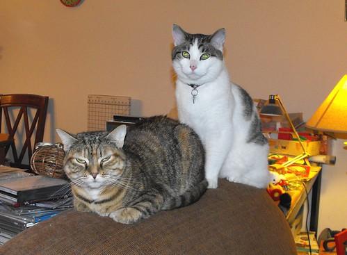 Nina & Victor