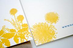 Flowering Field Wedding (Sarah Parrott) Tags: wedding summer yellow spring gocco invitation custom wildflower stationery rsvp