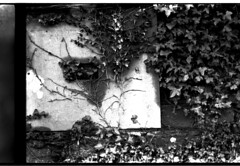 Exeter Graveyard-2 (1977)