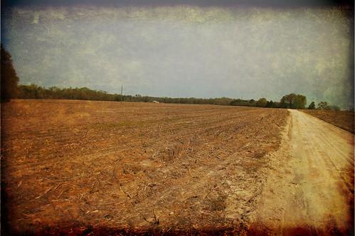 Textured Farm
