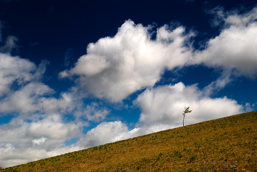 Gorkhi-Terelj National Park 17