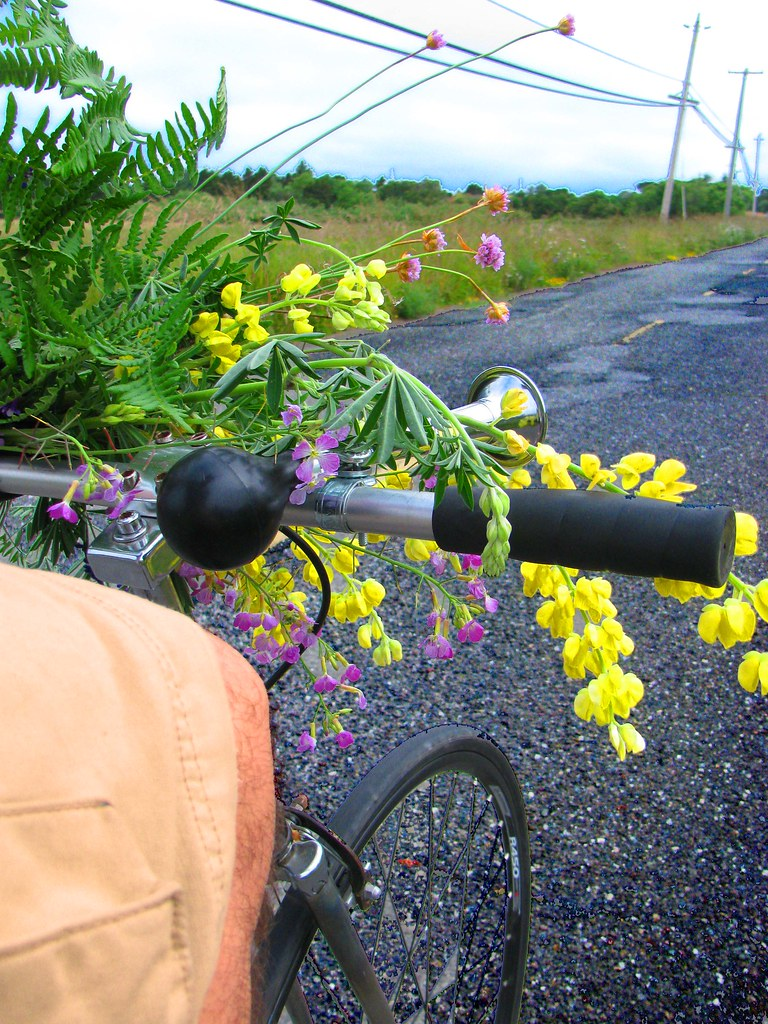 bikewithflowers