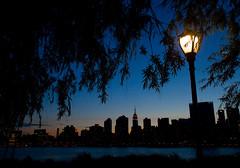 night falls (dakota.morrison) Tags: nyc skyline night twilight glow queens lic weepingwillow nightfall gloaming gantry streerlamp