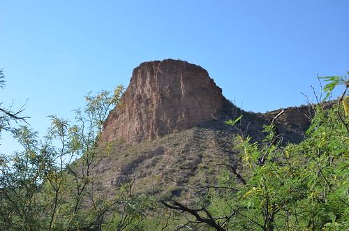 Arizona 2011 296