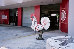 Fire Rooster At Brickell Fire Station In Miami (Phillip Pessar) Tags: art film station analog fire freedom downtown minolta florida kodak miami 400 tele rooster hd kodak400 c41