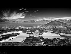 Gldar en B&W (Gonzalo Dniz) Tags: espaa white black blanco grancanaria mar nikon negro sigma canarias pico montaa 1020 camaras
