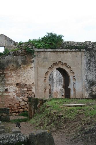 Ruins in Chellah