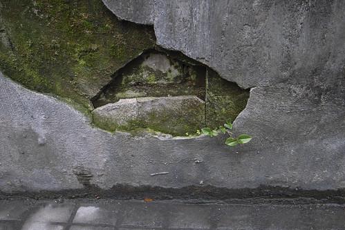 神楽坂界隈 3