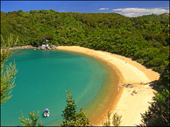 Te Pukatea (katepedley) Tags: new newzealand summer beach forest bay nationalpark bush sand crescent panasonic zealand nz granite southisland abeltasman fz30 seakayaking polariser nznative tasmannz specland tepukatea