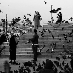 istanbul diaries XXI (Eni Turkeshi Imagery) Tags: city people urban bw birds turkey movement candid citylife lifestyle atmosphere istanbul expressionist cinematic emotions fugees eminonu explored marielito fotografkiraathanesi fotografeshqiptare independentphotos fotografca