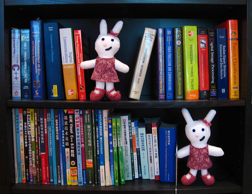 Bunnies Love Books