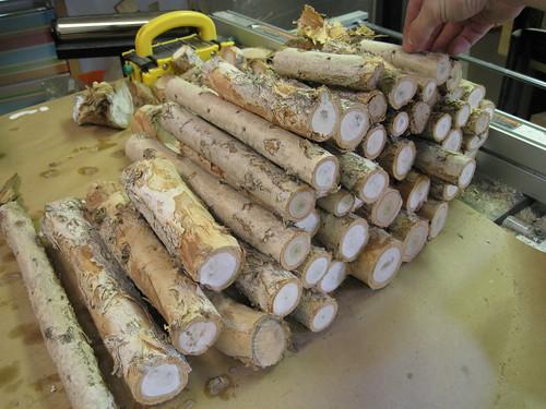 paperbark limbs cut up