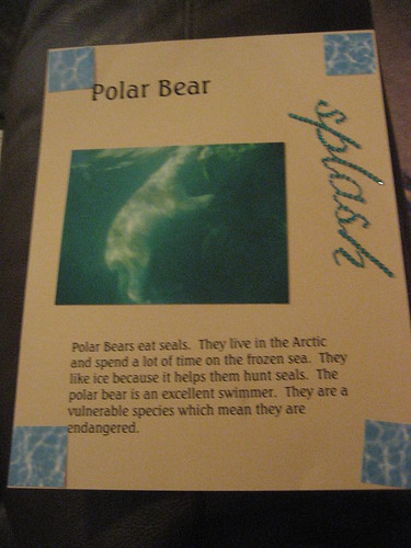 Polar Bear Notebook Page