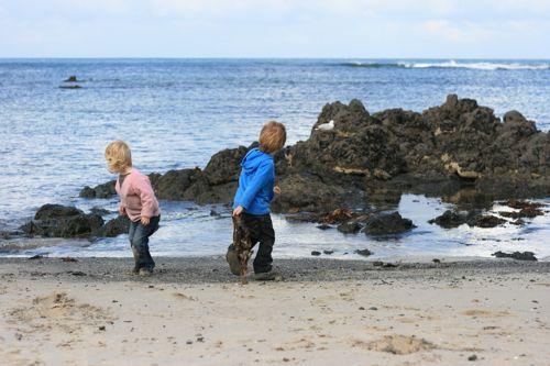 throwing seaweed