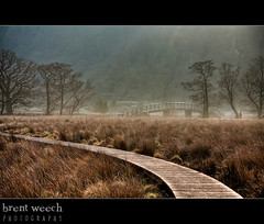 My path (bweech) Tags: uk bridge mist morninglight path lakedistrict keswick hdr