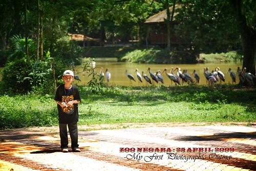 Zoo Negara edit