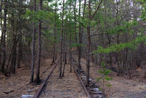 Pine Barrens Tracks 2
