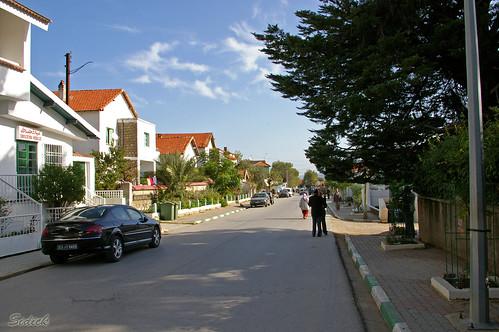 مدينة عين دراهم التونسيه 3498482580_6ac95f68a