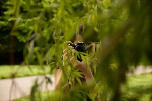 botanical_garden4