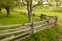 "Fields, Meadows and Split Rail Fence on Smith Farm - LDS historic site (IronRodArt - Royce Bair (""Star Shooter"")) Tags: new york friends green church field fence landscape joseph spring grove farm scenic meadow rail smith historic sacred mormon split agriculture lds"