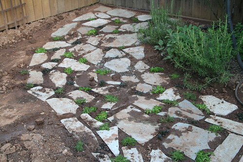 Pathway with Ground Covers: Work In Progress