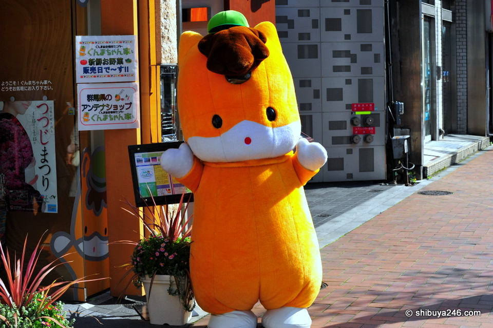 It seemed every man and his dog was out taking photos of Kabukiza today. Well, actually I dont think this is a dog. It is the official mascot for the Gunma-ken tourist board.
