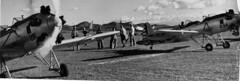 Ryan : PT-22 (San Diego Air & Space Museum Archives) Tags: aviation aeronautics sdasm