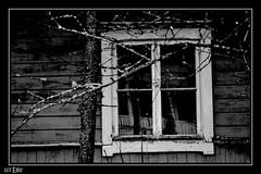 Ghost house? (elmu.) Tags: old house window finland scary ghost talo hus ghosthouse vanha gammal ikkuna loviisa kummitus haamu pelottava