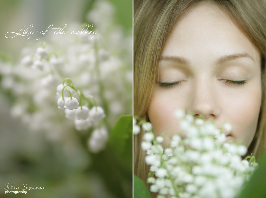 lily-of-the-valley-2