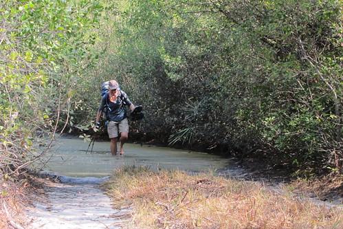 Florida Trail 099