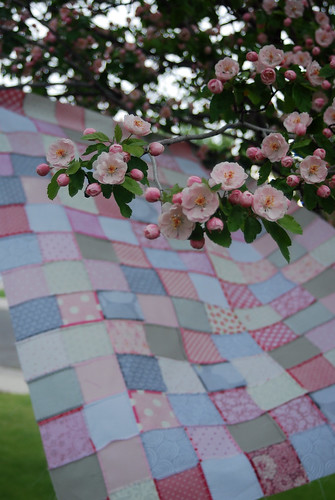 Apple Blossom Quilt Top- Back