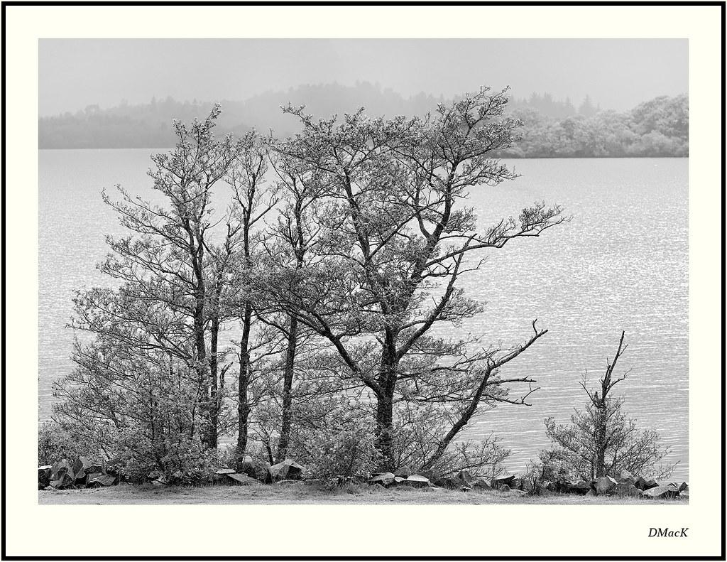 On the Loch Side