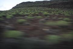 Gran Canaria 6 (Agüimes, Canary Islands, Spain) Photo