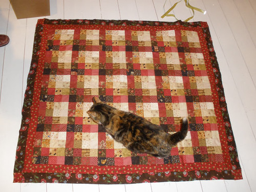 Aku (the cat) on a quilt made by Maaria