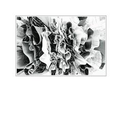 Raum V_3922 (danielalansink.com) Tags: wsche abstrakt frisch gestreift baumwolle stoffe experimentell hngen hemden stoff schwarzweis gewaschen baumeln kariert runterhngen oberhemden gebgelt