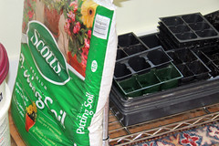 soil and old trays