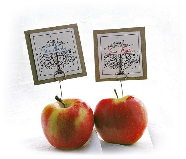 Ewelina & Tadeusz – motyw przewodni – jabłko