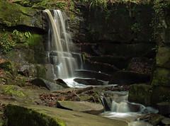 The Fairy Glen, Parbold. (Mr Grimesdale) Tags: woodland river waterfall olympus lancashire e510 parbold fairyglen mrgrimsdale stevewallace westlancashire mrgrimesdale