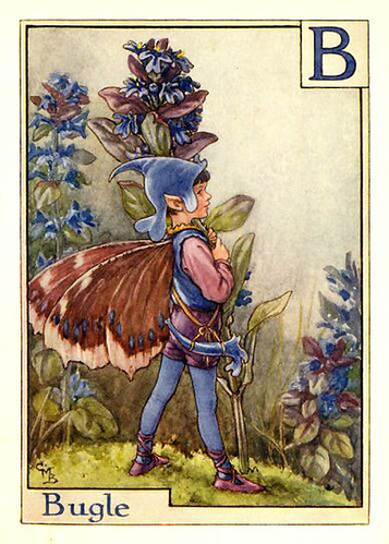 022-bugle_flower_fairy