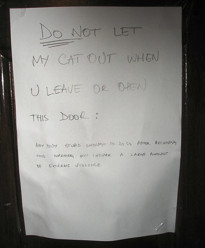 DO NOT let the cat out when u leave or open this door