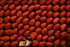 Campi di Fragole (strawberry fields) (ozio-bao) Tags: red 20d canon strawberry sigma 17 70 rosso fragole challengeyouwinner
