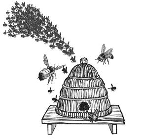 BeeSwarmHive