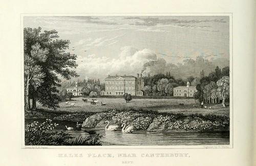 020- Hales Place cerca de Canterbury- Kent-1835