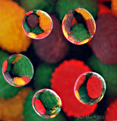 Jelly Bean Bubbles (angeldewdrps) Tags: color macro water mirror waterdrop refraction jellybeans nikond60