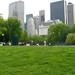 Central Park_9