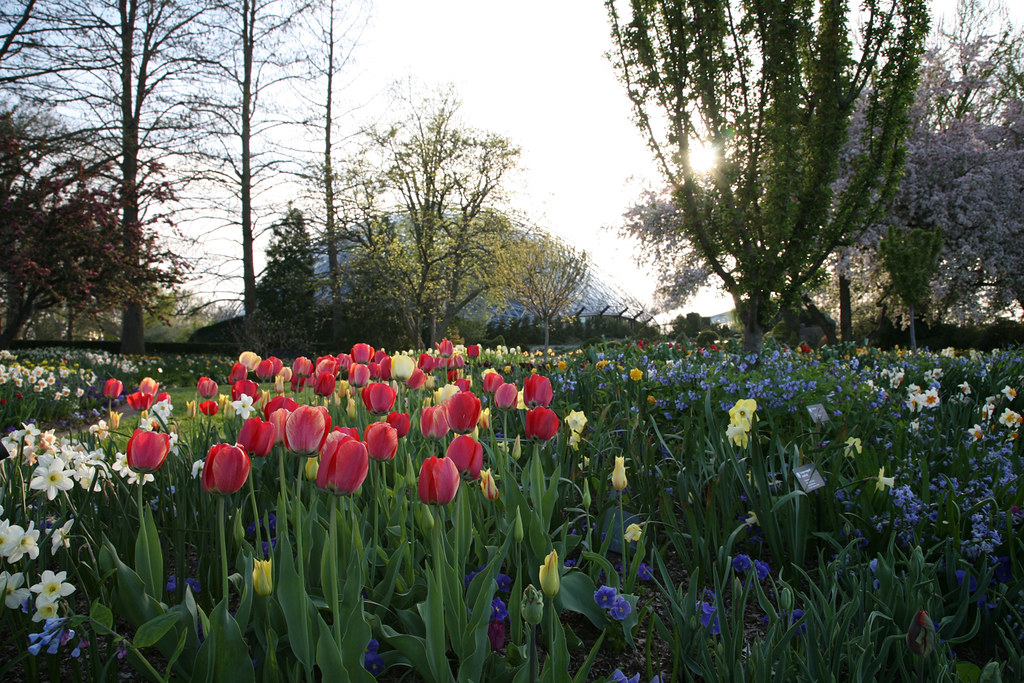Heckman Bulb Garden