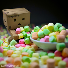 021/365:  Marshmallow Heaven! (Randy Santa-Ana) Tags: food toys marshmallows danbo gf1 project365 danboard 365daysofdanbo
