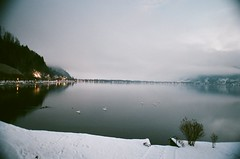 Swans on the lake (Ed.ward) Tags: longexposure lake holiday snow mountains alps tree film water lights hotel austria skiing superia swans shrub zellamsee 2010 nikonf80 fujisuperia seehof zellersee schmittenhohe hotelseehof fb:uploaded=true fb:request=true nikkor20mmf28afd geo:lat=47327843 geo:lon=12797565